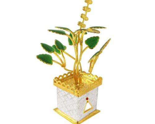Silver Tulsi Plant - Griha Pravesh Gift Idea